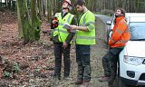 Photo of Crown Reduction & Endoscoping for Bats (for the Forestry Commission) - New Forest, Hampshire