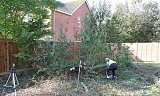Photo of Tree Felling and Site Clearance - Chichester, West Sussex