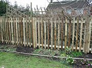 The completed Palisade fencing thumb