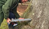 Photo of Visual Tree Assessment & Surveying - Brockenhurst, Hampshire